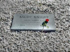 Ascot Knight