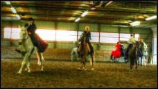 Grelo Farm 12