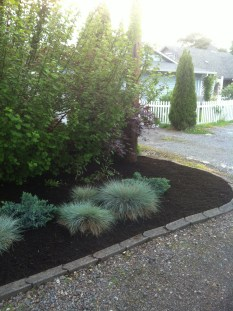 Fresh dirt in front of house planter area near the road.