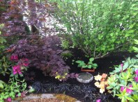 Lush plants surround a small garden nook with a birdbath.