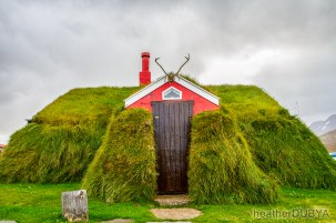 Iceland (28 of 40)