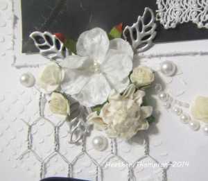 dream close up 2
