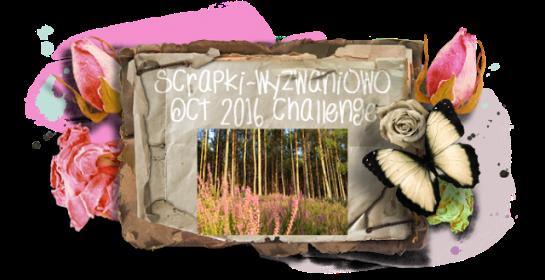 sw-board10-2016