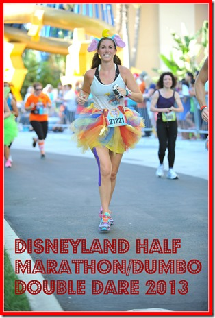 Dumbo double dare runDisney