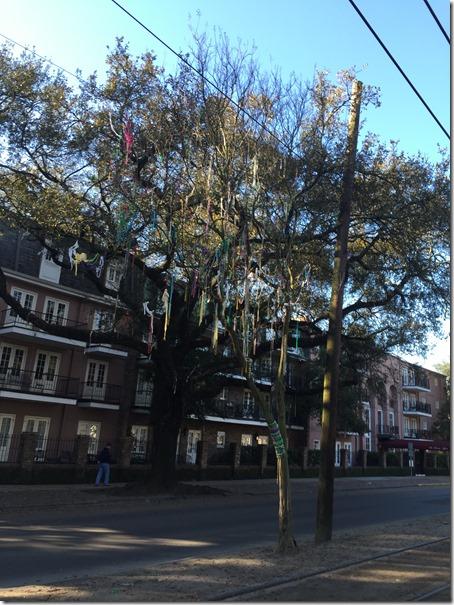 RnR mardi gras tree