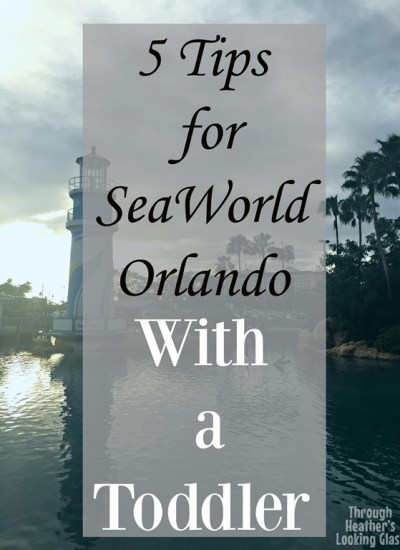 Tampa Tuesdays: SeaWorld with a Toddler