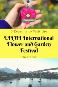 5 reasons to visit the EPCOT International Flower and Garden Festival this spring at Walt Disney World Resort