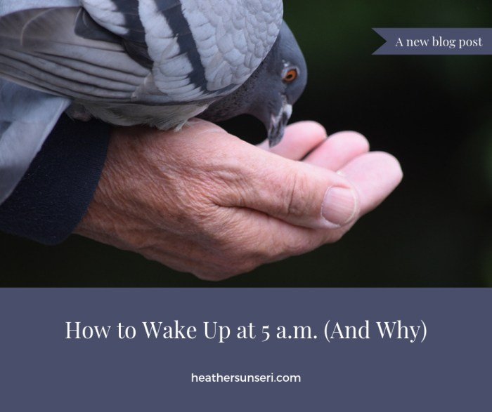 waking up early to see man feeding bird in park in Dublin, Ireland. gather your thoughts and journal by waking up early