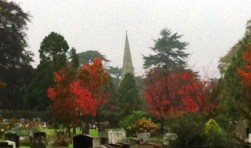 Autumn colours at the cemetery