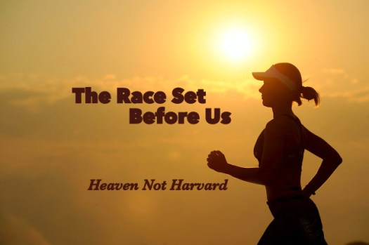 Ever get advice at the starting line of a marathon? They say, run your race. We have to run the race set before US. Not compare our journey with another's finish line.