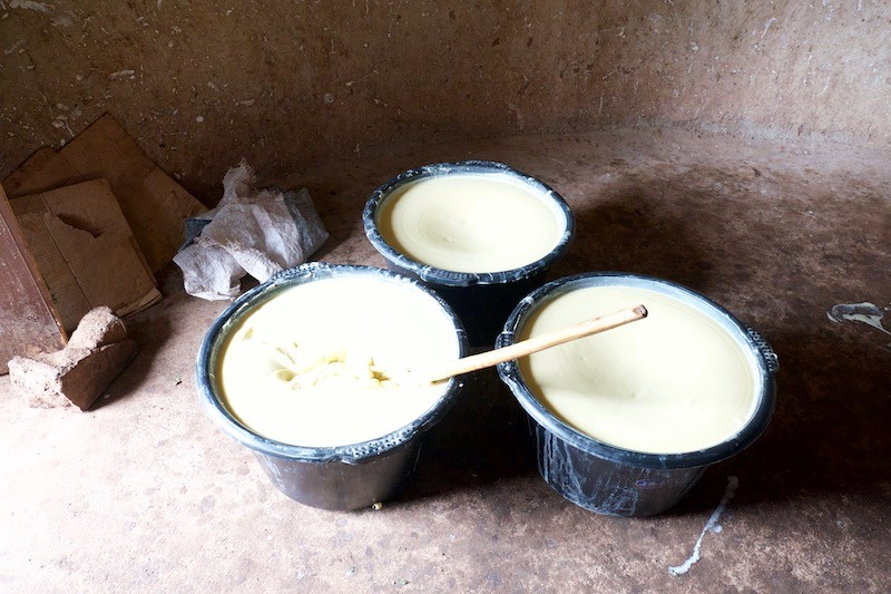 Raw Shea Butter Pots