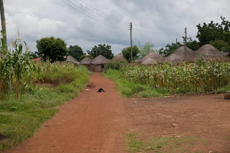 ghana-africa-shea-butter-african-black-soap