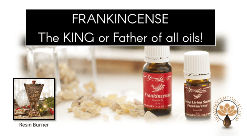 frankincense-the-king-or-father-of-all-oils