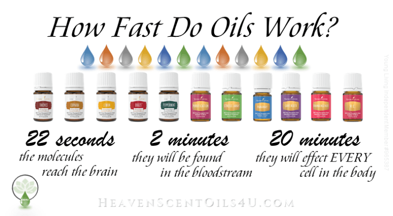 how-fast-do-oils-work