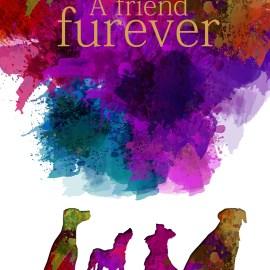 A Friend Furever