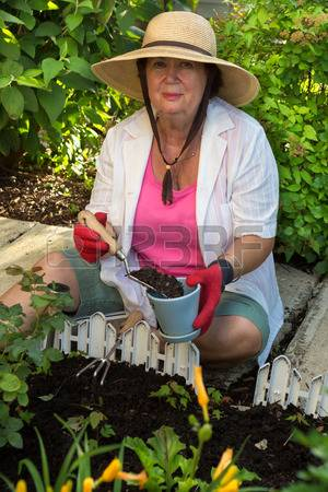 29655521-senior-lady-doing-yard-work-around-the-house-sitting-on-the-paving-stones-in-the-garden-potting-up-a