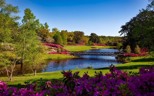 bellingrath-gardens-1612728__480