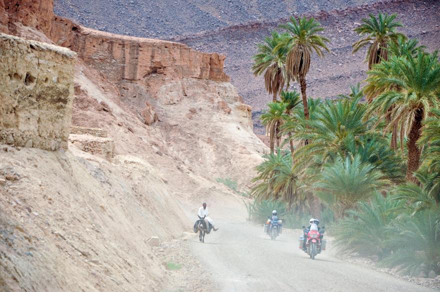 maroc (200 of 467)