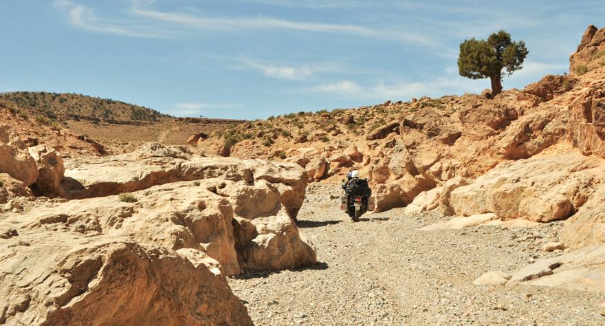 maroc (37 of 467)