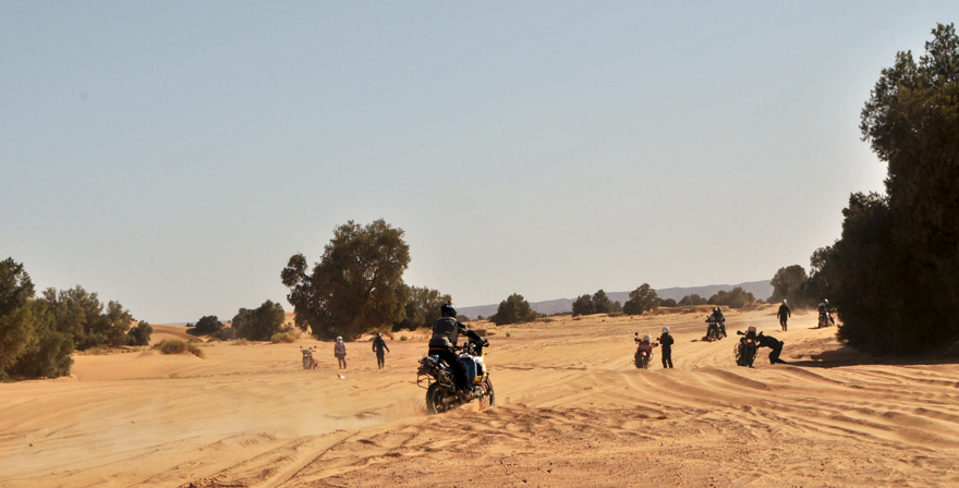 maroc (65 of 467)
