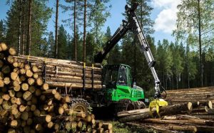 Forestry & Logging Machinery For Sale