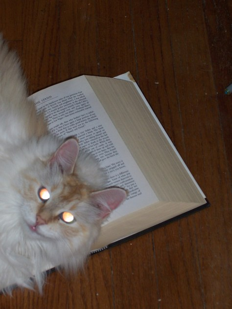 Sophie loved to read horror novels like The Stand