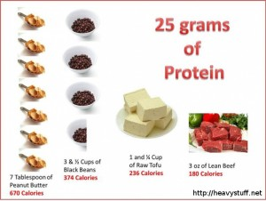 25-grams-of-protein