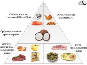 Пирамида жиров
