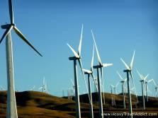 Even Windmills look nice here