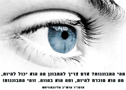 התבוננות וראיה