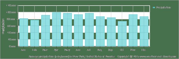 ממוצע גשמים בניו יורק