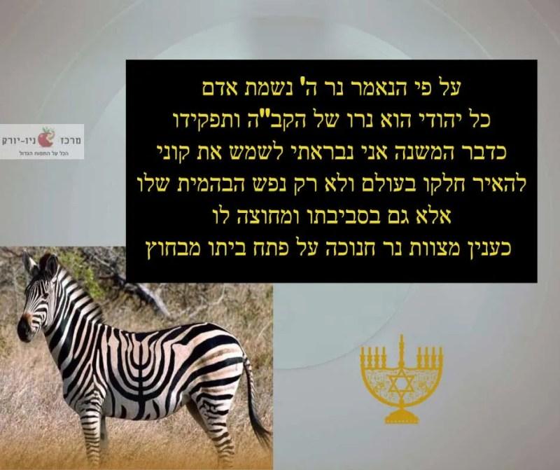 כל יהודי תפקידו להאיר את העולם בסביבתו ומחוצה לה