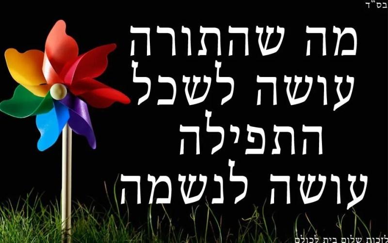 פתגם-יומי-על-תורה-ותפילה