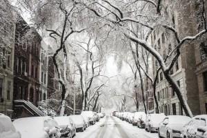 חורף מושלג בניו יורק