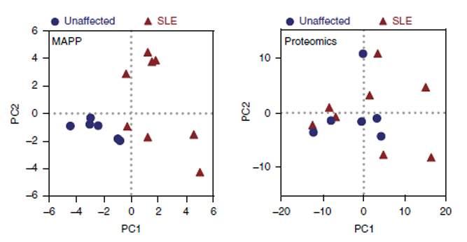 בדיקות חלבונים שגרתיות (מימין), להבדיל מבדיקת MAPP (משמאל), לא חשפו את ההבדל בין חולי זאבת (משולשים אדומים) לנבדקים בריאים (נקודות כחולות)
