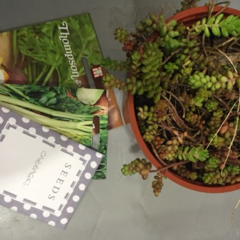 Seed and plant swap
