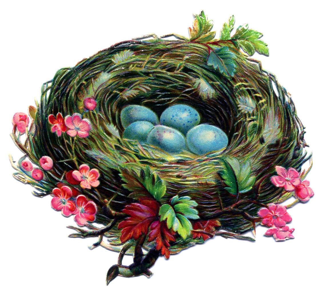 Nest Egg Vintage