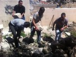 cleaning the area arond the Tel Rumeida building that will be used as a kindergarten 3