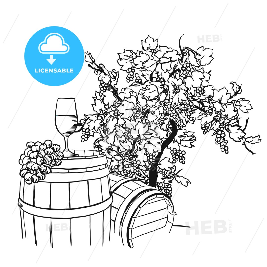 Vine barrel, glass and tree drawing