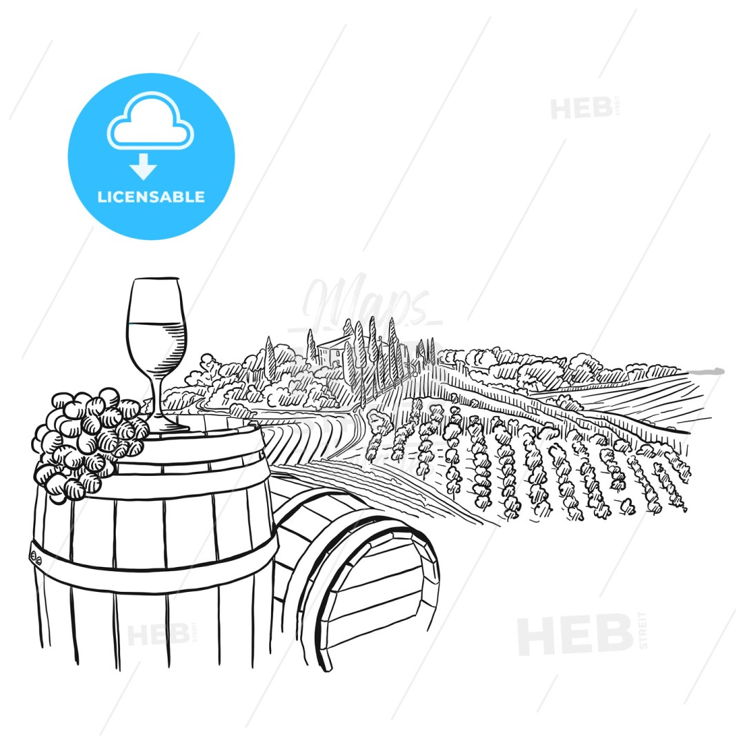 vineyard landscape with glass illustration