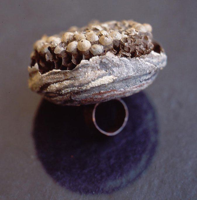 Janna Syvänoja, Hello Honey, it's Me, ring, 2001. Foto met dank aan Janna Syvänoja©
