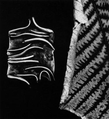 Darina Horváthová, broche, 1968. Foto met dank aan Die Neue Sammlung, Adolf Vrhel©