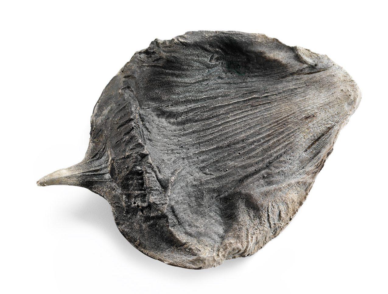 Marian Hosking, Bunya pine, broche, 2016. Collectie Daalder. Foto Grant Hancock, metaal