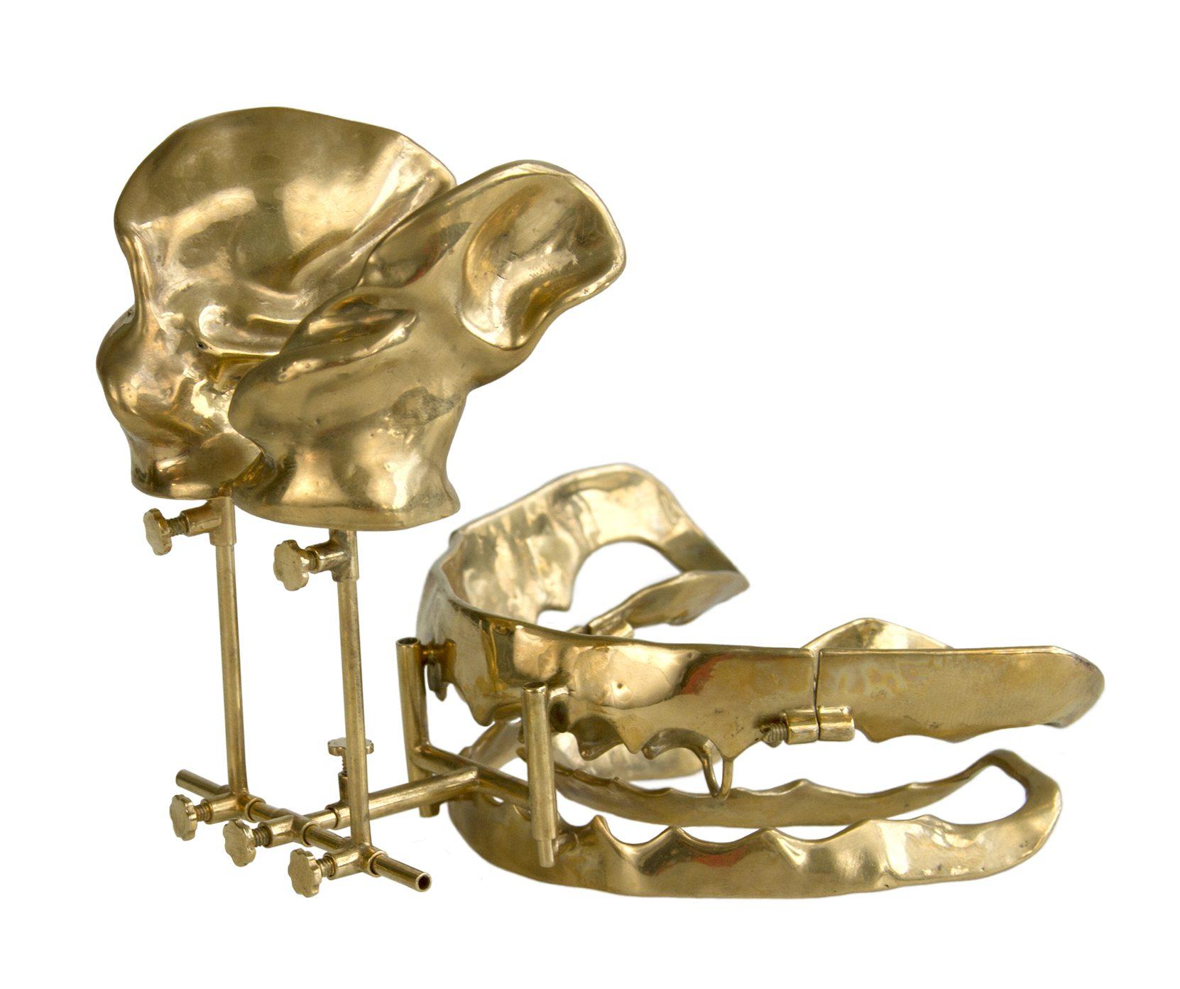 Lauren Kalman, Device for Filling a Void (1), 2014, koper, zilver, goud