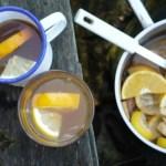 Hot Mulled Scrumpy Cider (aka Bonfire Juice)