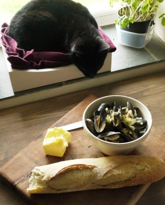 Moules marineres and sassy cat