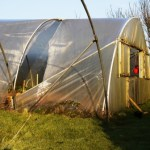 Sad Poly Tunnel :(