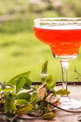 Sweet and Sour Cosmo Cocktail