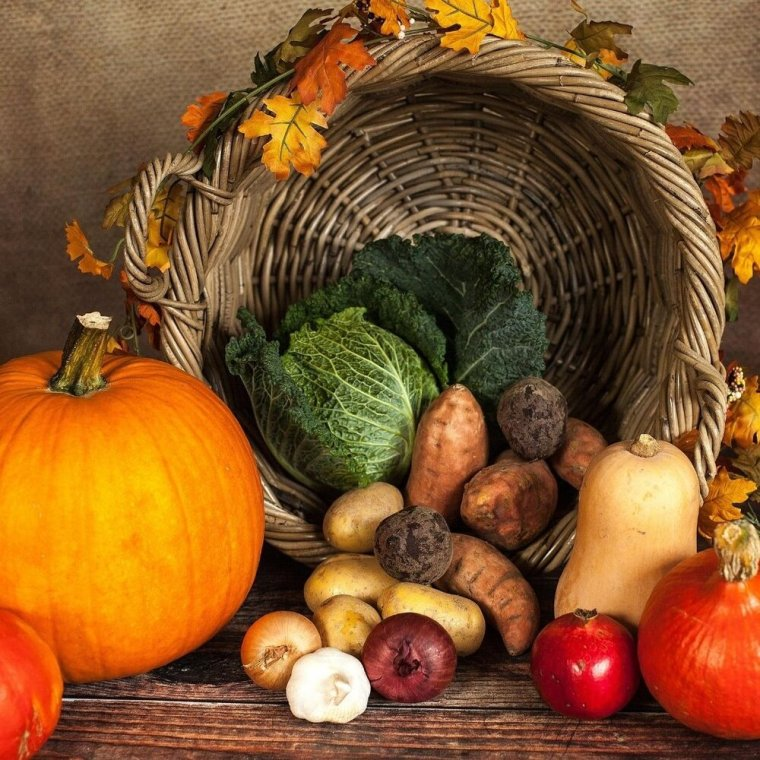 So, how do we celebrate the harvest respectfully? This all relates in part back to indigenous food and history as I just described. Obviously, Thanksgiving is still a national holiday — so the question is what do you do that day? Many indigenous people today are of mixed heritage and do find themselves observing Thanksgiving with their families and focusing more on its aspect as a harvest holiday which have been celebrated across all cultures throughout history. I know that's always been my intention in celebrating the holiday whether its at Mabon or secular Thanksgiving celebrations.  -