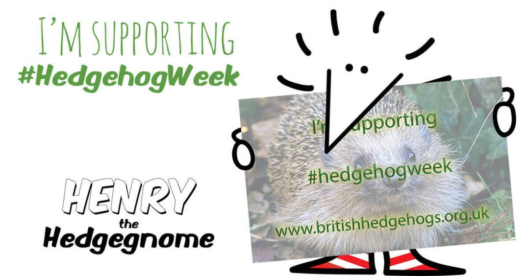 Children's books | Henry the Hedgegnome | I'm supporting Hedgehog week